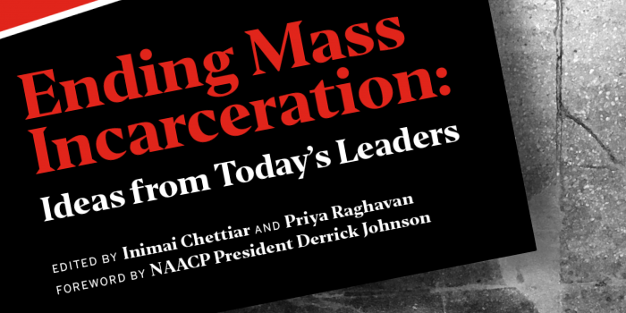 Ending Mass Incarceration book cover